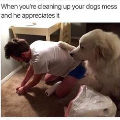 when you're cleaning up your dog's mess and he appreciates it