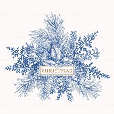 Greeting card with pine branches, holly berries and leaves, fern. - Greeting card with pine branches, holly berries and leaves, fern. Winter Illustration, Tree Illustration, Christmas Illustration, Botanical Illustration, Christmas Frames, Christmas Art, Christmas Berries, Botanical Drawings, Botanical Prints