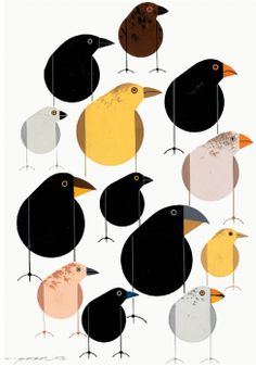 Darwin's Galapagos Finches Lithograph Print by Charley Harper $50