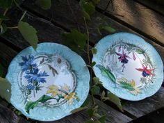 You will receive a pair of absolutely gorgeous hand painted plates that I believe to be at least 100 years old. They have an outstanding