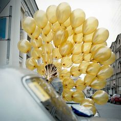 Standard Gold Balloon Multi Pack – Wedding & Event Supplies – Photo Prop - Decoration For Home Gold Balloons, Wedding Balloons, Yellow Balloons, Champagne Balloons, Balloons Galore, Champagne Bottles, Love Balloon, Balloon Ideas, Deco Table