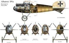 Albatros D.Va profiles - plan views by Mark Miller