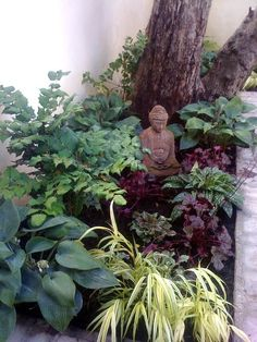 Small Shade Garden Ideas Photograph | Found on gracefulgarde