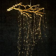 Stargazer Cascade Falls Lights, PlugIn is part of Branch decor - These Terrain exclusive LED string lights brighten your house inside and out With flexible wires, they can be scattered and strung anywhere Shop today! Autumn Lights, Holiday Lights, Gold Christmas Lights, Indoor Christmas Lights, Cascading Christmas Lights, Christmas Lights In Bedroom, Cascade Falls, Tree Lighting, Lighting Ideas