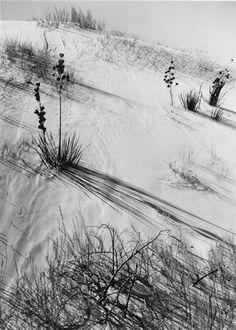 Dunes, Hazy Sun, White Sands Nat'l Monument by Ansel Adams