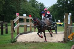 competing at Sandringham in 2011.  Tiffany Foster backstepping.