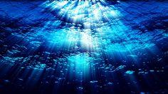 Underwater Stock Videos Water FX0324 HD, 4K https://vimeo.com/214482660