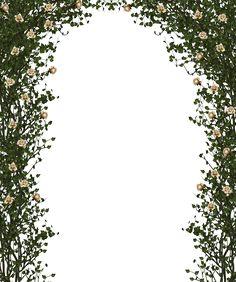 Rose Bush Frame / Border by collect-and-creat.deviantart.com on @DeviantArt