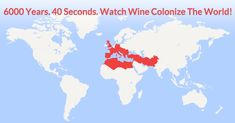 The History Of Wine A 40 Second Animated GIF