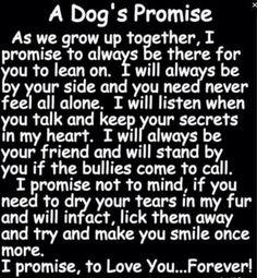 A dog's promise.... Sweet stuff.