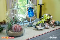 DIY Silver-Dipped Sea Shells from @cristinacooks! Catch #homeandfamily weekdays at 10/9c on Hallmark Channel!