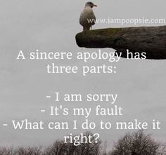 "Sincere apology quote"" 3 parts:  .  I am sorry . It's my fault .What can I do to make it right?"