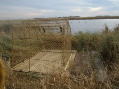 WAHLU Youth Duck hunting blind