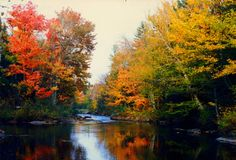 4.18.2015.Cedar River, along the Northville-Placid Trail, ADKs, NY. oct 1987