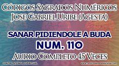 PEDIRLE A BUDA CODIGOS SAGRADOS 110.