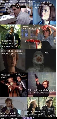 A (very) rough Summary Of Every X-Files Episode Ever  (<3 xfiles)