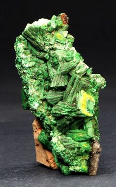 Torbernite from Margabal mine, Aveyron, Midi-Pyrenees, France. Torbernite is a radioactive, hydrated green copper uranyl PHOSPHATE mineral