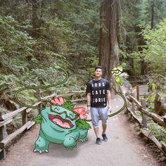 Pokémon Holiday Pics par Andy Pikapi