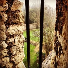For beautiful views and scenic runs head to Farnham Castle...