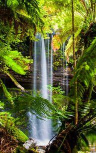 Russel Falls in Tasmanien