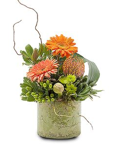 Monrovia Florist - Order flowers online from your florist in Monrovia, CA Monrovia Floral offers fresh flowers and hand flower delivery right to your door in Monrovia. Get Well Flowers, Home Flowers, Fall Flowers, Fresh Flowers, Flowers Garden, Colorful Flowers, Wedding Flowers, Modern Floral Arrangements, Beautiful Flower Arrangements