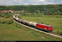 RailPictures.Net Photo: ZS - Zeleznice Srbije ZS 461-011 at Belgrade, Serbia and Montenegro by MlajdaSRB