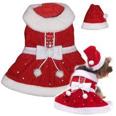 Mrs. Santa Claus Holiday Dog Dress