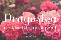 Dragostea,Love,Valentine's Day