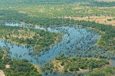 Okavango Delta | Simply #Botswana Safaris