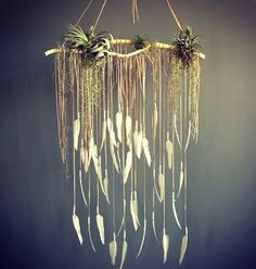 Electric Love hanging feather and air plant bohemian dream catcher via fox fodder farm Dreamcatchers, Cool Backdrops, Deco Cool, Do It Yourself Inspiration, Small Dream Catcher, Spanish Moss, Deco Floral, Wedding Guest Book, Air Plants