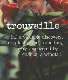 Word for the Day: Trouvaille (n), a valuable discovery or a lucky find; something lovely discovered by chance; a windfall The Words, Fancy Words, Weird Words, Pretty Words, Beautiful Words, Cool Words, Unusual Words, Unique Words, Aesthetic Words