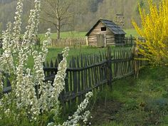 Photo: Hut in a field in the Great Smoky Mountains in North Carolina, USA