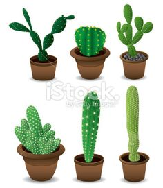 Cactus set Royalty Free Stock Vector Art Illustration