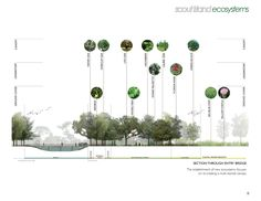 Gardening And Landscape Design Business Diploma Course Sustainable Architecture, Landscape Architecture, Architecture Plan, Landscape Design, Landscape Diagram, Landscape Plans, Parque Linear, Architecture Presentation Board, Presentation Boards