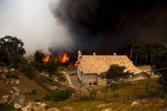 Kebakaran Cocos mengamuk dekat kawasan perumahan di San Marcos, California, 15 April 2014. Kebakaran hutan di California Selatan mengakibatkan ribuan penduduk meninggalkan rumah mereka.