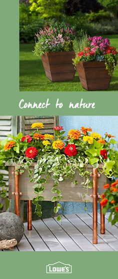 Make an entrance to your garden with colorful, easy-care plants and gardening essentials from Lowe's. Start your backyard transformation today. This fan page has a wide range of information about gardening. Garden Yard Ideas, Garden Planters, Lawn And Garden, Garden Projects, Diy Projects, Easy Garden, Garden Design Ideas On A Budget, Garden Mesh, Garden Stools