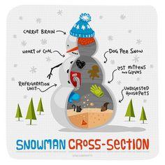 Snowman Cross Section