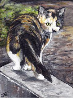 Turtle kitty... by LenaZLair.deviantart.com on @DeviantArt