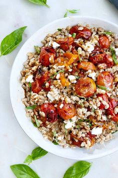 Warm Farro Salad with Roasted Tomatoes – this healthy grain salad is bursting with flavor from balsamic roasted tomatoes, fresh goat cheese, and basil. It's simple, comforting and downright delicious. Vegetarian Side Dishes, Healthy Side Dishes, Vegetarian Recipes, Roasted Summer Vegetables, Italian Vegetables, Cherry Tomato Sauce, Roasted Cherry Tomatoes, Farro Recipes, Salad Recipes
