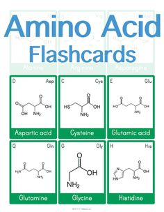 Customizable and Printable Amino Acid Flashcards