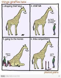 It's hard being a giraffe