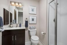 Rental Beast Oak Park Illinois, Wide Plank Flooring, Bike Storage, Rooftop Terrace, Granite Counters, Stainless Steel Appliances, Closet Space, Open Concept, Washer And Dryer