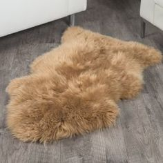Shop SheepskinTown for the best selection of Single Sheepskin Rugs. Buy the Honey Sheepskin Rug ft) by Bowron with fast same day shipping.