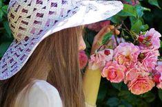 Impariamo a conoscere le più comuni malattie delle rose per avere piante sempre sane e perfette