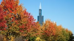 Fun things to do in Chicago in the Fall - TimeOut Chicago