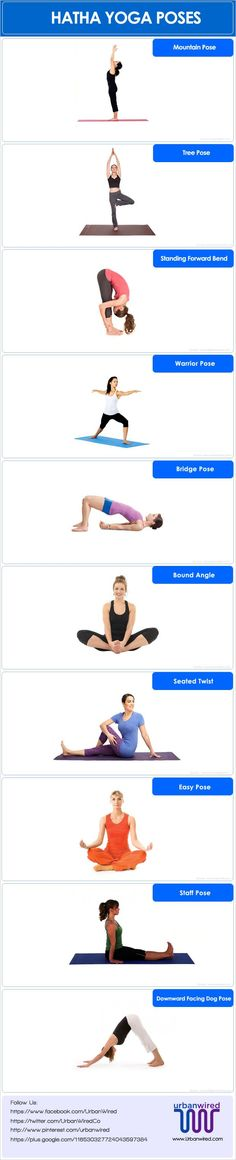 Basic hatha yoga poses can typically be performed by people of all age groups. If you are suffering from chronic diseases then you can try hatha #yoga poses.