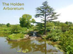 The Holden Arboretum, Kirtland, Ohio