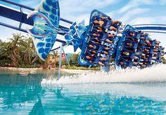 Hospédate dentro de la diversión. Renaissance Orlando at SeaWorld #Orlando #SeaWorld
