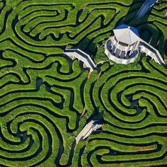 Visit the Longleat Safari Park and Maze in the United Kingdom