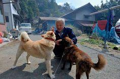 Der letzte Mensch in Fukushima kümmert sich aufopferungsvoll um Tiere